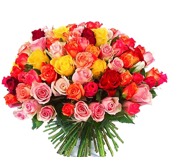 La Rose Multicolore Multicolore Livraison De Bouquets De Roses